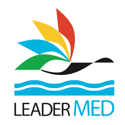 logo leadermed